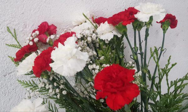 claveles-multicolor-ramo