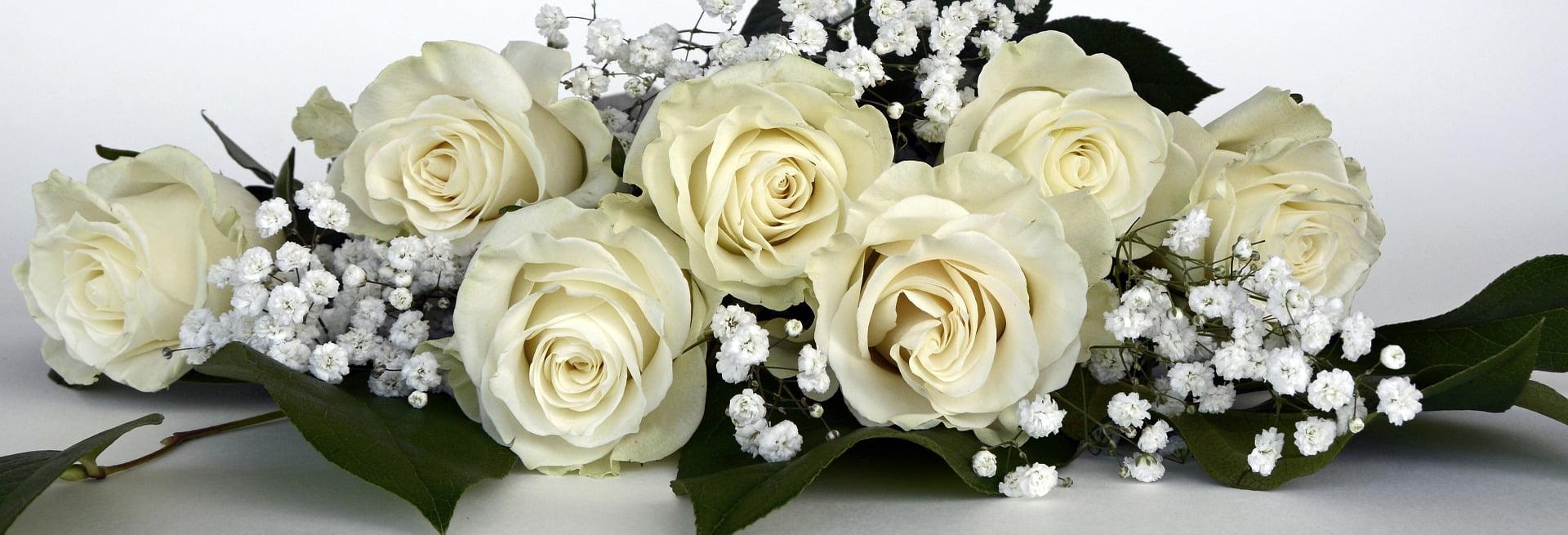 rosas blancas para ramos de novia