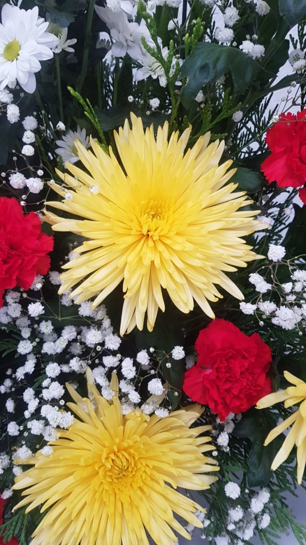 Centro-flores