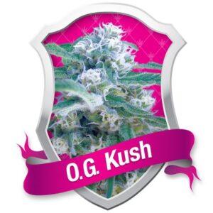 OG_Kush