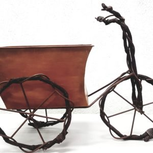 Bicicleta porta-macetas
